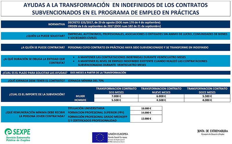 Ayudas a la transformación en indefinidos de los contratos subvencionados en el programa de empleo en prácticas.