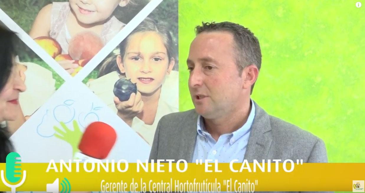 Central Hortofrutícola El Canito