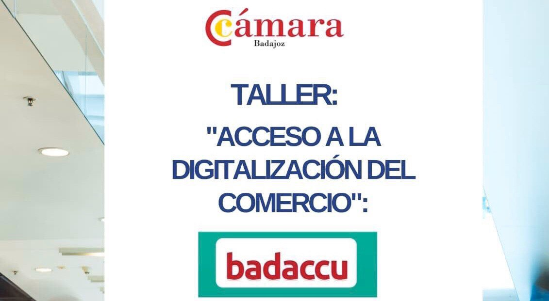 Acceso a la digitalización del comercio