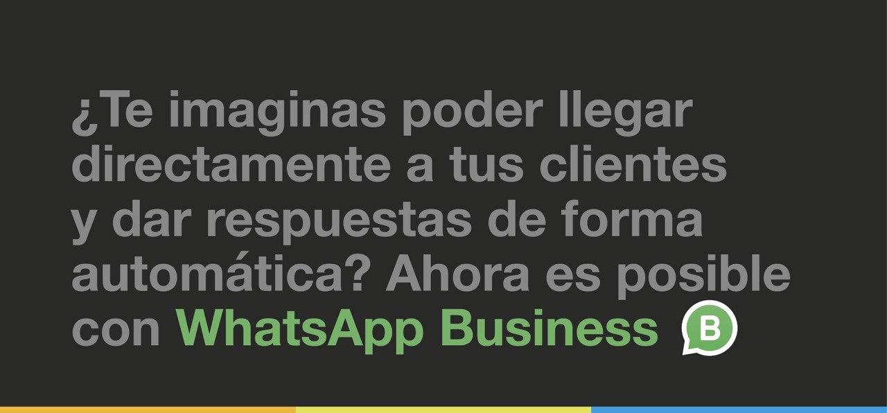 Taller online «Whatsapp Business»
